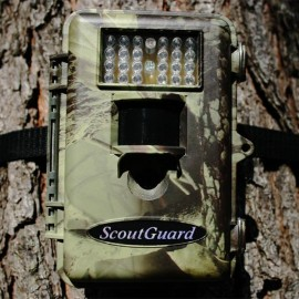 BOLYGUARD SG 565 FLASH INCANDESCENT
