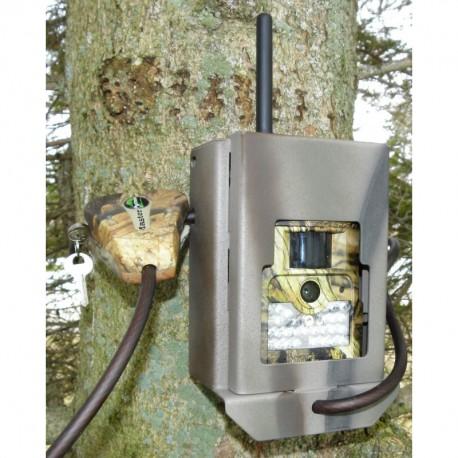 Pack bolyguard BG584-24mp-4G-GSM