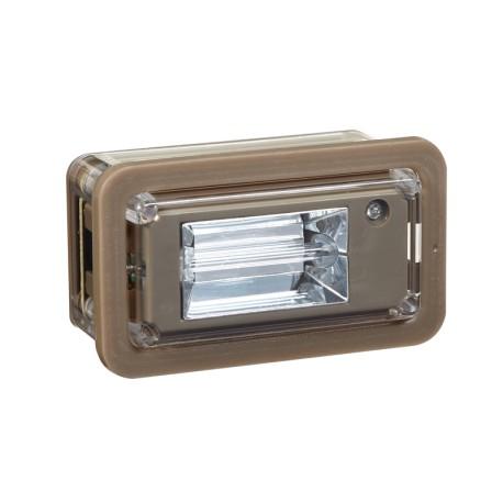 Module C1 Flash incandescent